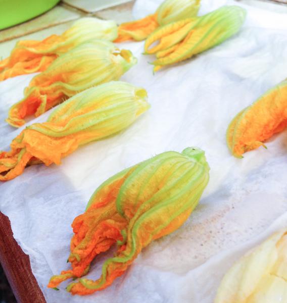 Les Papotages de Nana - Beignets de fleurs de courgettes