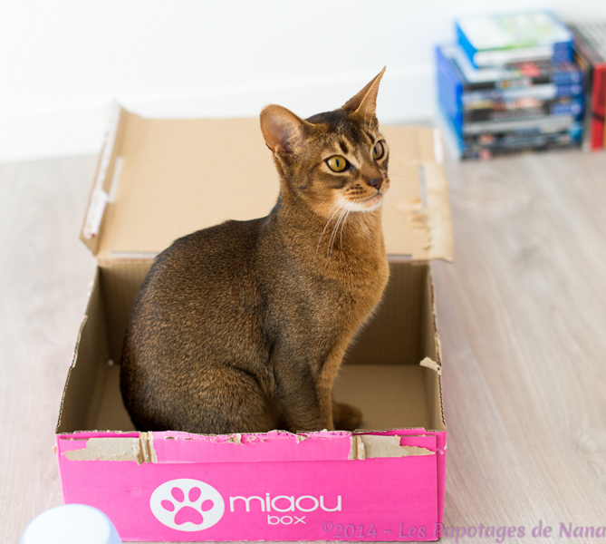 Les Papotages de Nana : MiaouBox